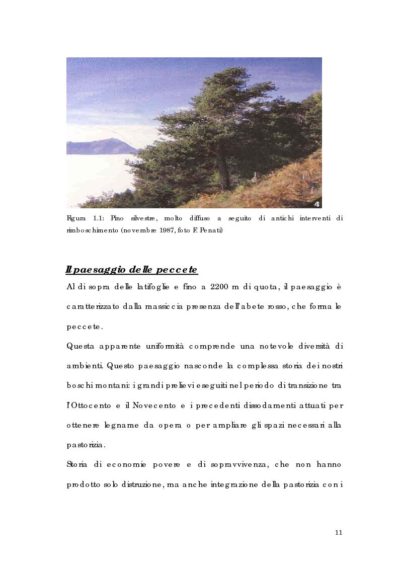Anteprima della tesi: Utilizzo di tecnologia GIS per l'analisi di alpeggi e malghe in Alta Valtellina, Pagina 5