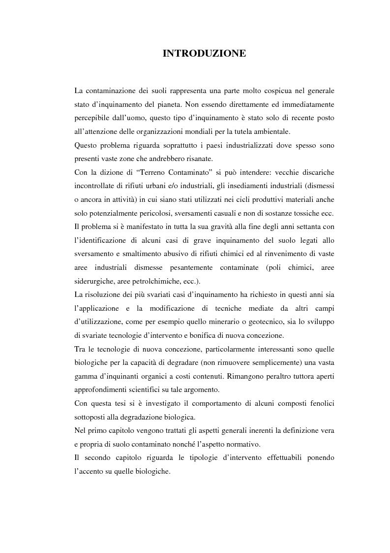 Anteprima della tesi: Studio della rimozione biologica di composti fenolici da suoli contaminati, Pagina 1