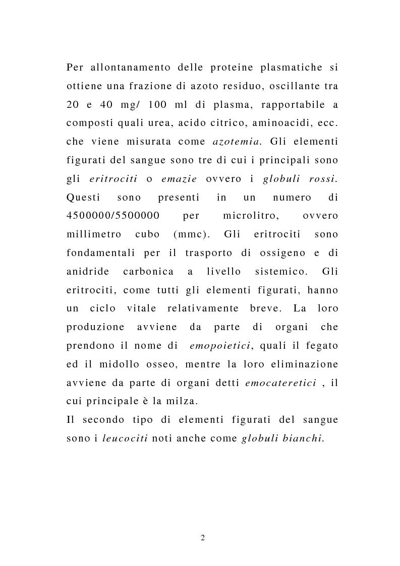 Anteprima della tesi: Porpora Trombocitopenica Idiopatica, Pagina 2