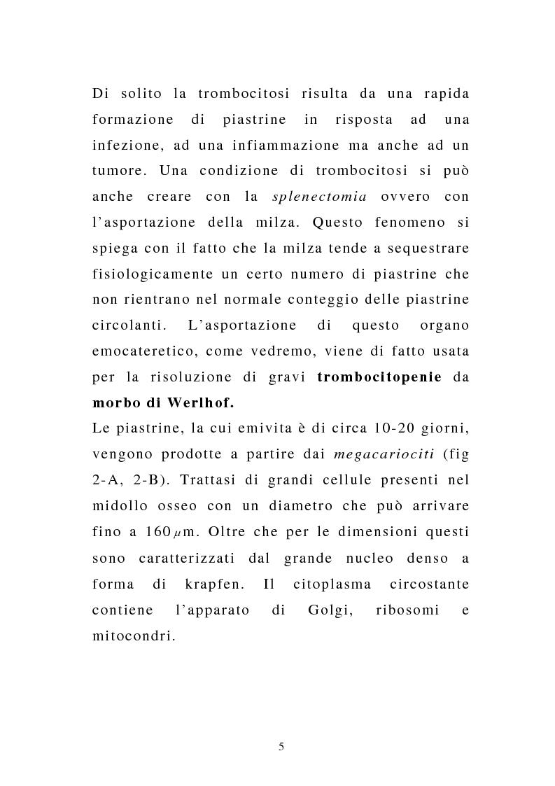 Anteprima della tesi: Porpora Trombocitopenica Idiopatica, Pagina 5