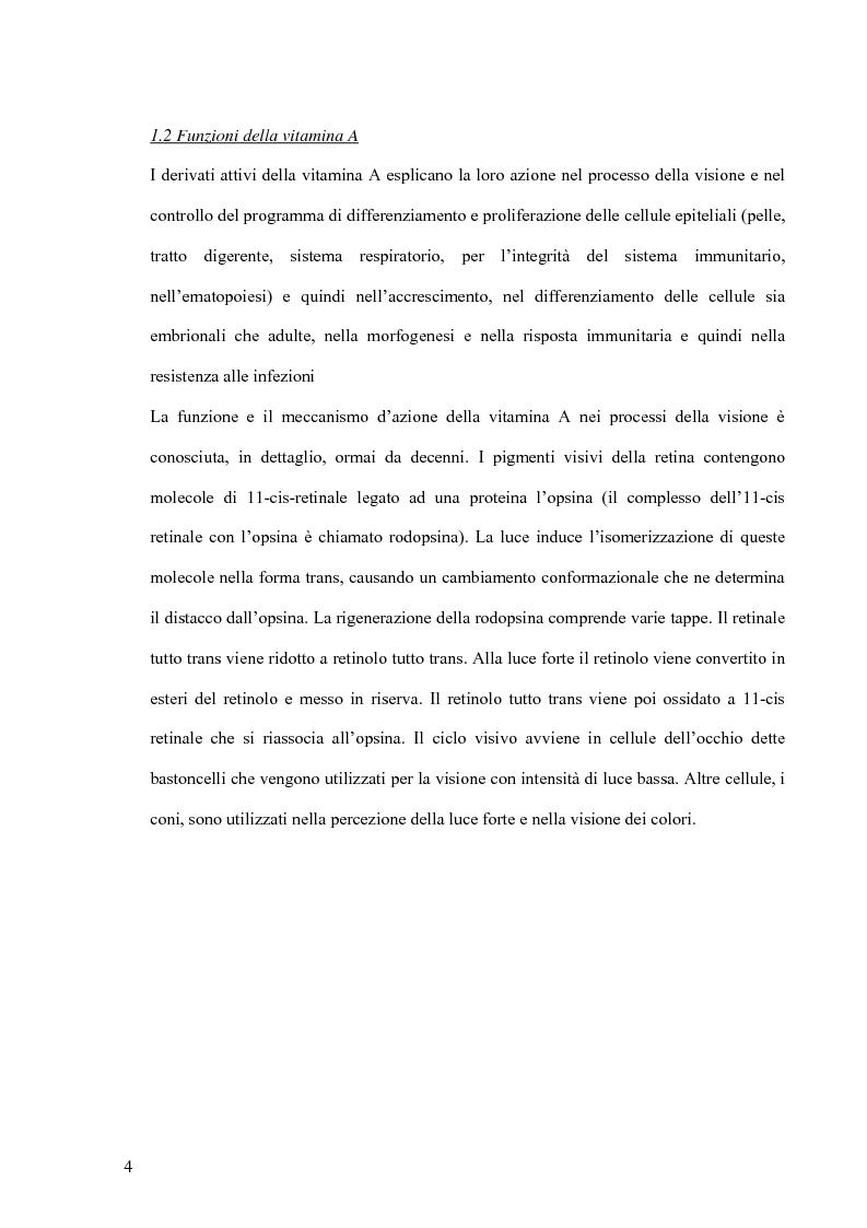 """Anteprima della tesi: Utilizzazione della vitamina A: regolazione della secrezione del suo trasportatore """"Retinol Binding Protein"""" (RBP) dall'epatocita, Pagina 3"""