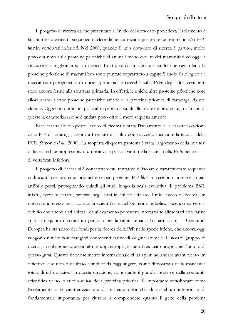 Anteprima della tesi: Identificazione e caratterizzazione dei cDNA e dei rispettivi geni codificanti per la proteina prionica di Xenopus laevis e per due distinte proteine PrP-like nei pesci, Pagina 2