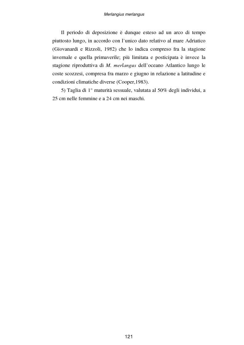 Anteprima della tesi: Ciclo biologico annuale di Merlangius merlangus (L., 1758) (Osteichthyes, Gadidae) nell'alto-medio Adriatico, Pagina 4