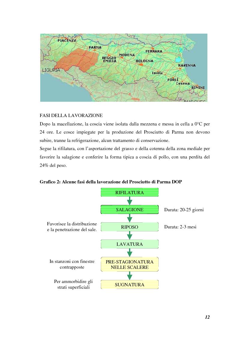 Anteprima della tesi: Prodotti tipici, azioni di marketing ed educazione alimentare: l'esperienza nelle scuole primarie di Reggio Emilia, Pagina 14