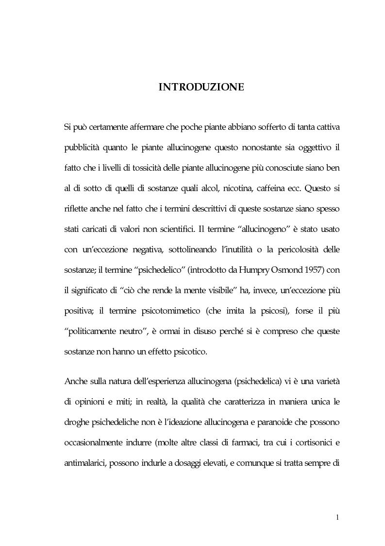 Anteprima della tesi: La carne degli dei (considerazioni sui funghi allucinogeni), Pagina 1