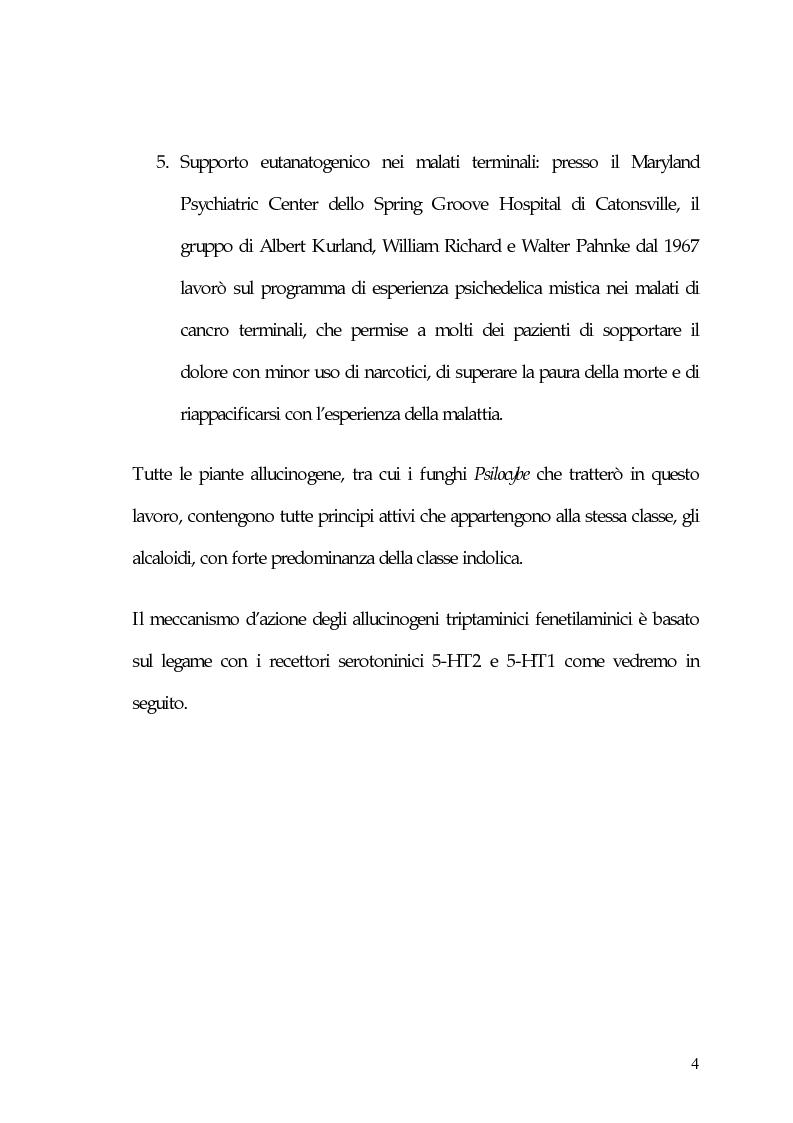 Anteprima della tesi: La carne degli dei (considerazioni sui funghi allucinogeni), Pagina 4