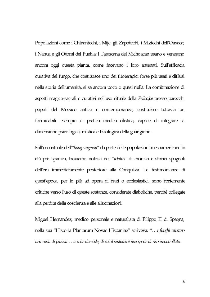 Anteprima della tesi: La carne degli dei (considerazioni sui funghi allucinogeni), Pagina 6