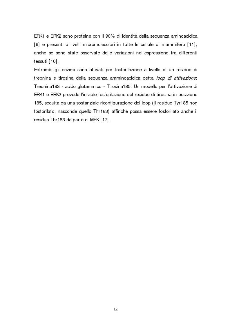 Anteprima della tesi: Meccanismi molecolari coinvolti nel differenziamento neuronale indotto da Acido retinoico nella linea cellulare di neuroblastoma umano SH-SY5Y, Pagina 9