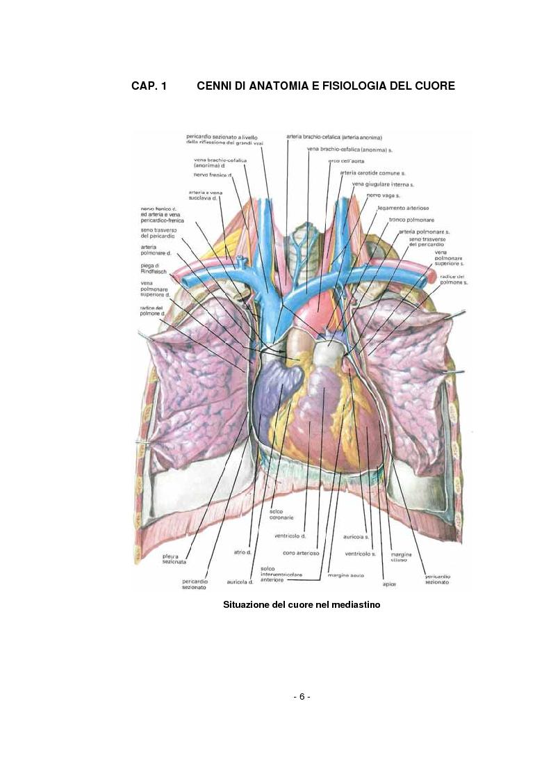 Anteprima della tesi: L'infermiere nella gestione dell'arresto cardiocircolatorio e nella successiva diagnostica cardiovascolare ambulatoriale, Pagina 2