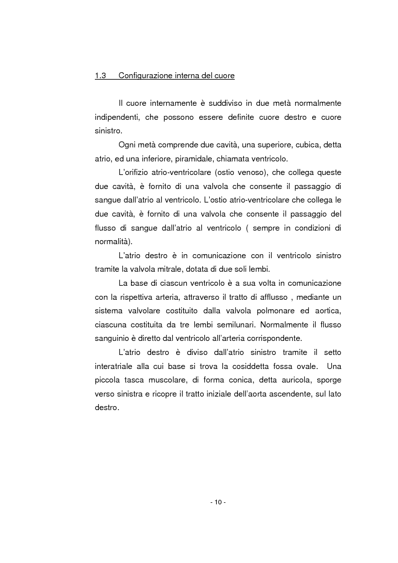 Anteprima della tesi: L'infermiere nella gestione dell'arresto cardiocircolatorio e nella successiva diagnostica cardiovascolare ambulatoriale, Pagina 6