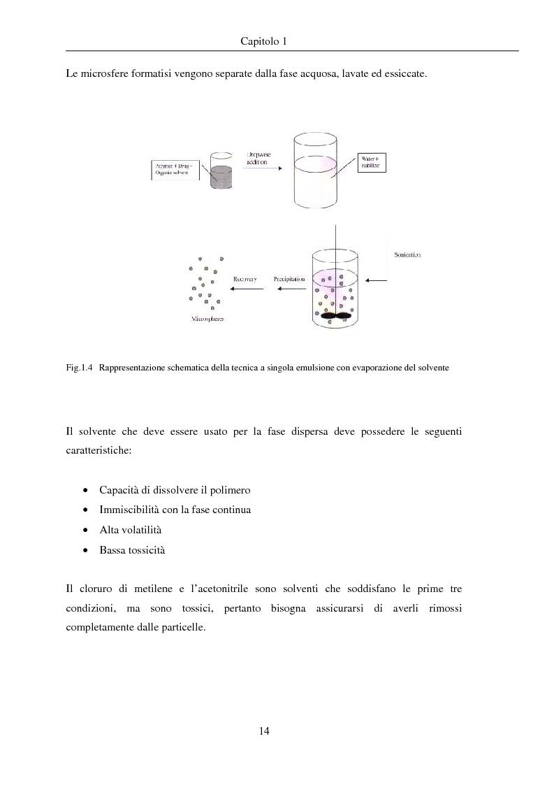 Anteprima della tesi: Fenomeni di trasporto in carrier farmaceutici, Pagina 14