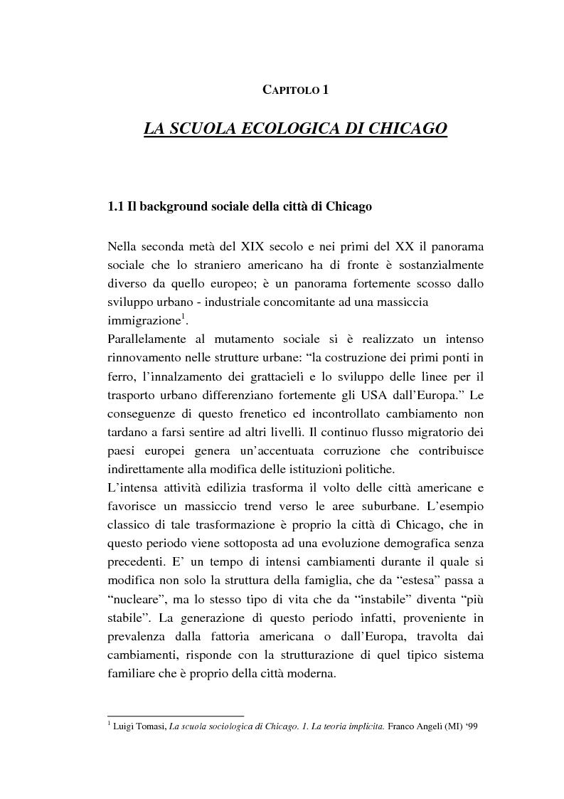 Anteprima della tesi: Dalle subculture alle idioculture, Pagina 9